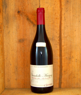Chambolle Musigny, Cacheux 2011