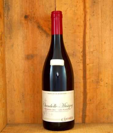 Chambolle Musigny, Cacheux 2015